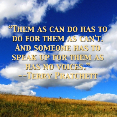 terry-pratchett-quote